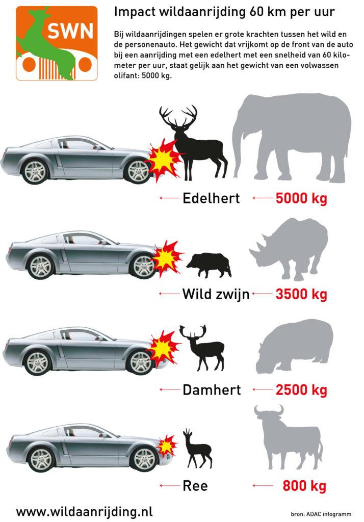 Impact wildaanrijdingen